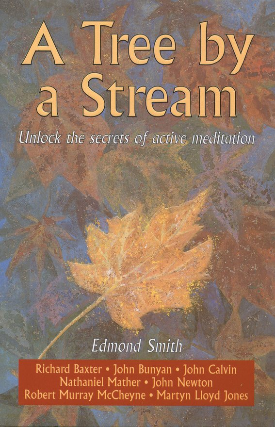 A Tree By a Stream, Unlock the secrets of active meditation
