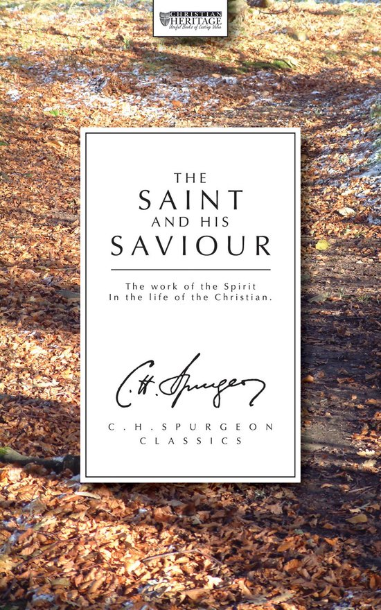 The Saint And His Saviour, The work of the Spirit in the life of the Christian