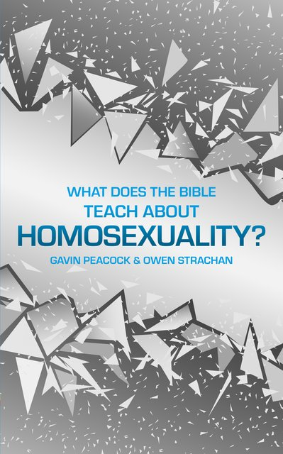 What Does the Bible Teach about Homosexuality?A Short Book on Biblical Sexuality